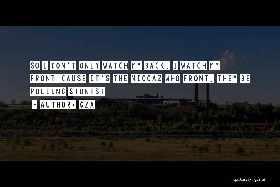 My Stunts Quotes By GZA