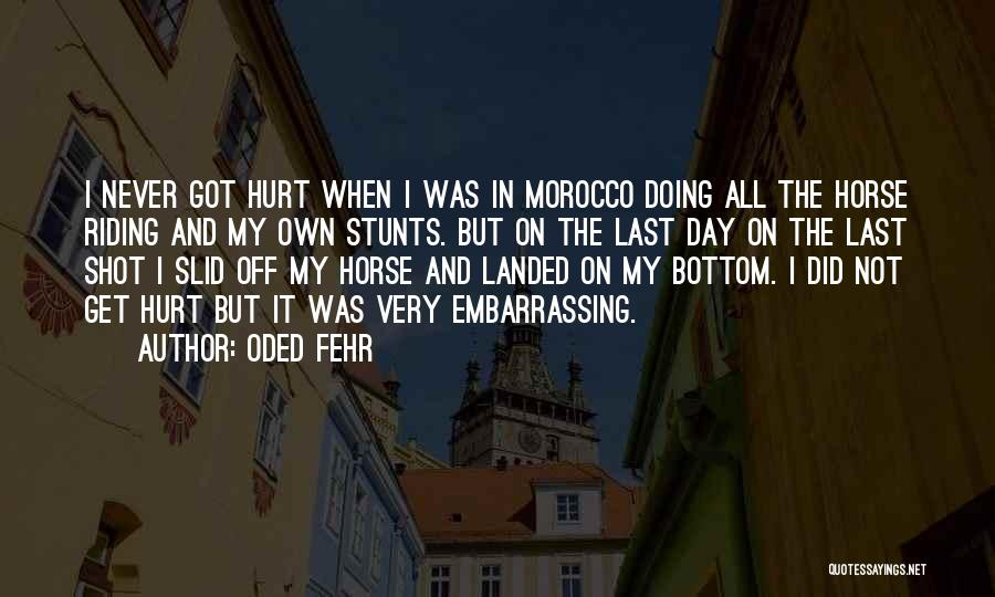 My Stunts Quotes By Oded Fehr