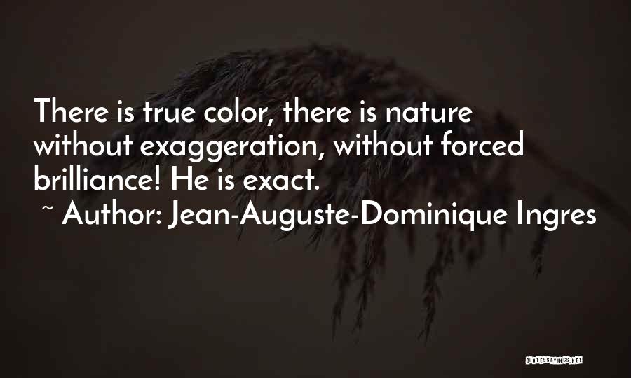 My True Colors Quotes By Jean-Auguste-Dominique Ingres
