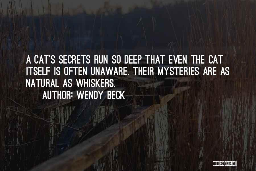 Mysteries Quotes By Wendy Beck