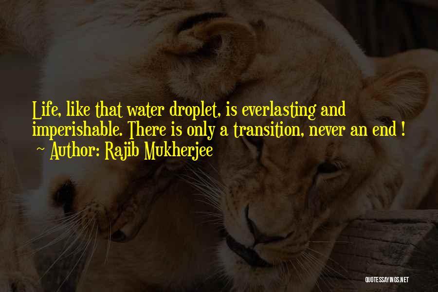 Mystery Thriller Quotes By Rajib Mukherjee