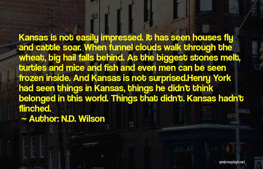 N.D. Wilson Quotes 1076850