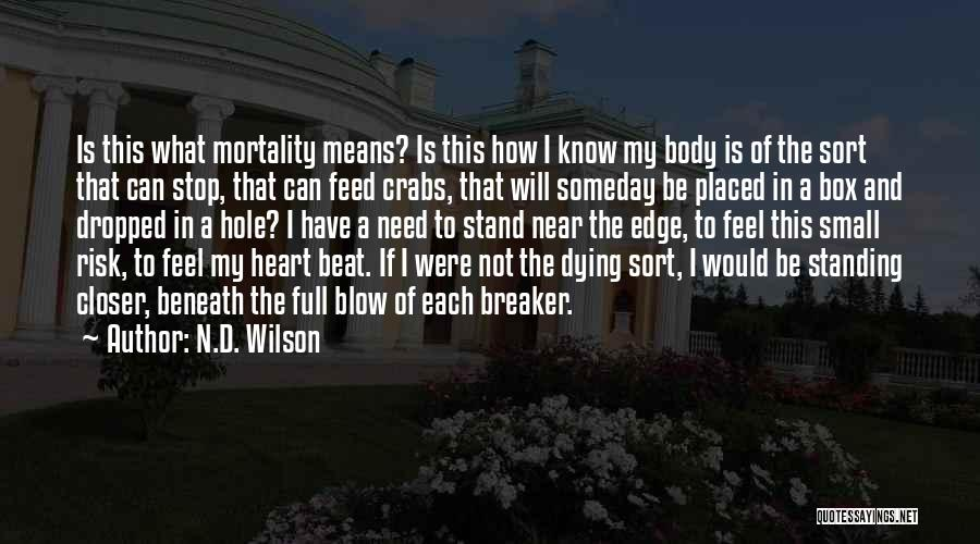 N.D. Wilson Quotes 1078833