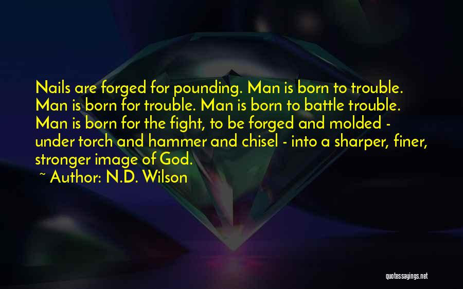 N.D. Wilson Quotes 1523040