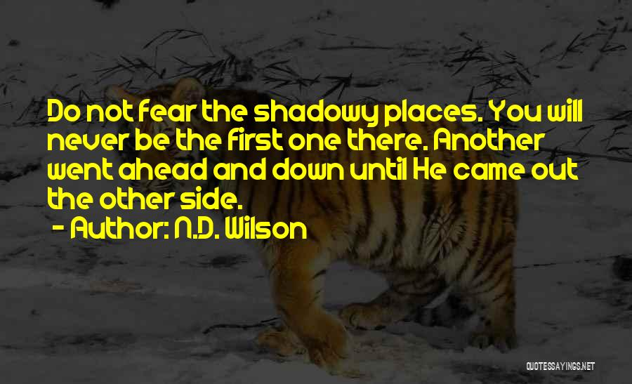 N.D. Wilson Quotes 1674604