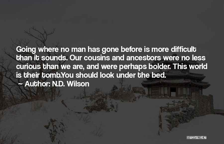 N.D. Wilson Quotes 2192491