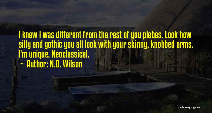 N.D. Wilson Quotes 489134