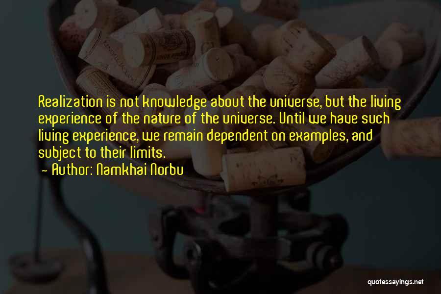 Namkhai Norbu Quotes 1305992