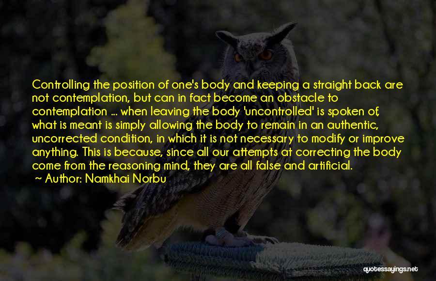 Namkhai Norbu Quotes 1805682