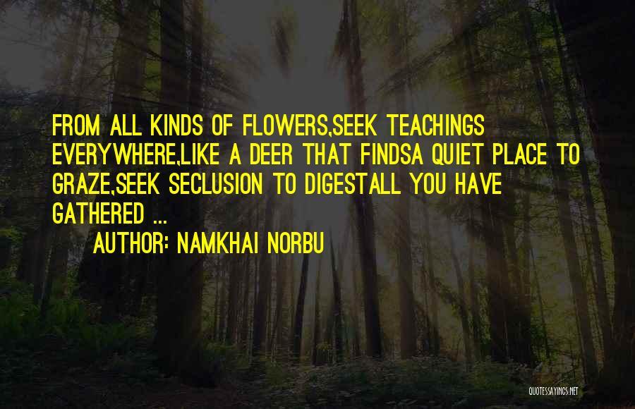 Namkhai Norbu Quotes 309732