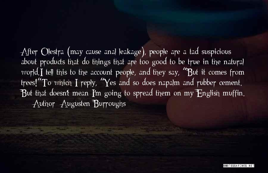 Napalm Quotes By Augusten Burroughs