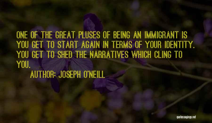 Narratives Quotes By Joseph O'Neill