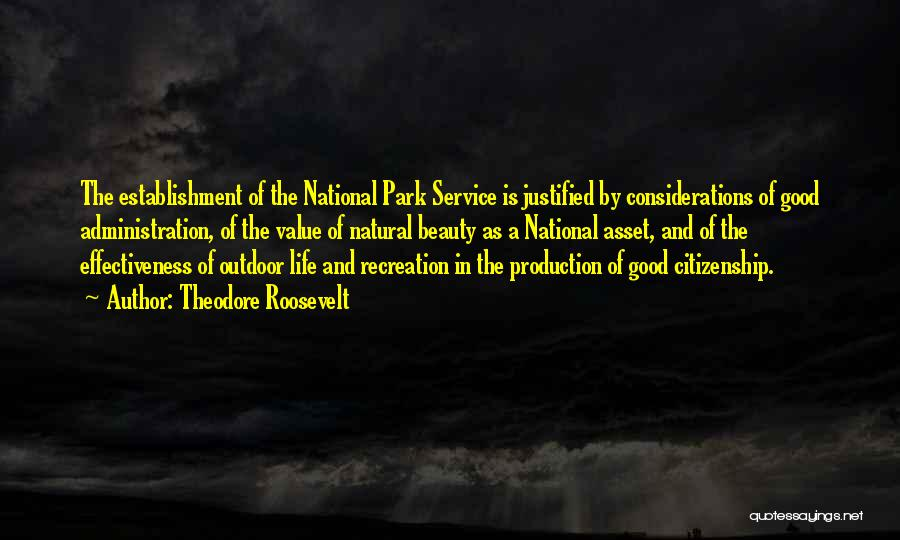 National Service Quotes By Theodore Roosevelt