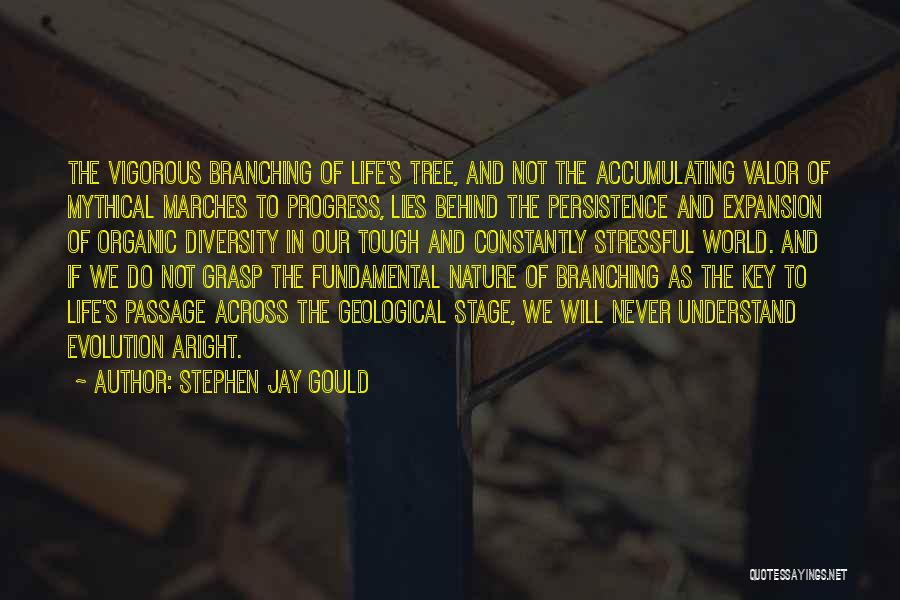 Nature Of Quotes By Stephen Jay Gould