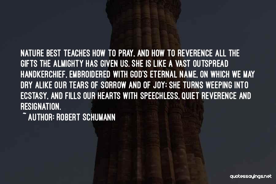 Nature Teaches Us Quotes By Robert Schumann