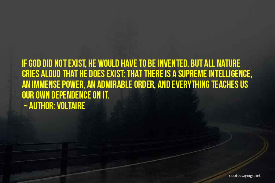 Nature Teaches Us Quotes By Voltaire