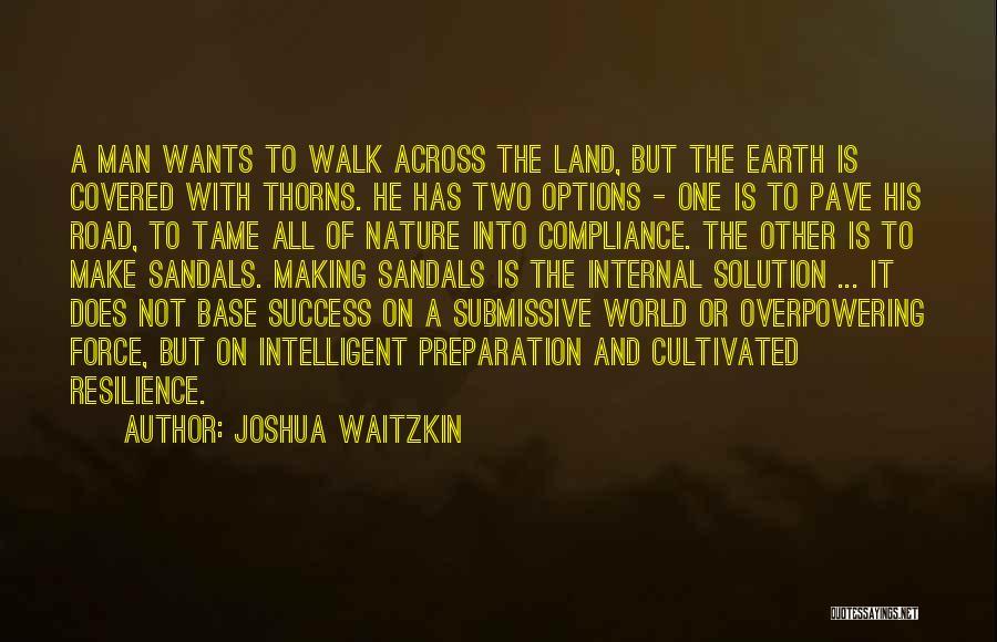 Nature Walk Quotes By Joshua Waitzkin