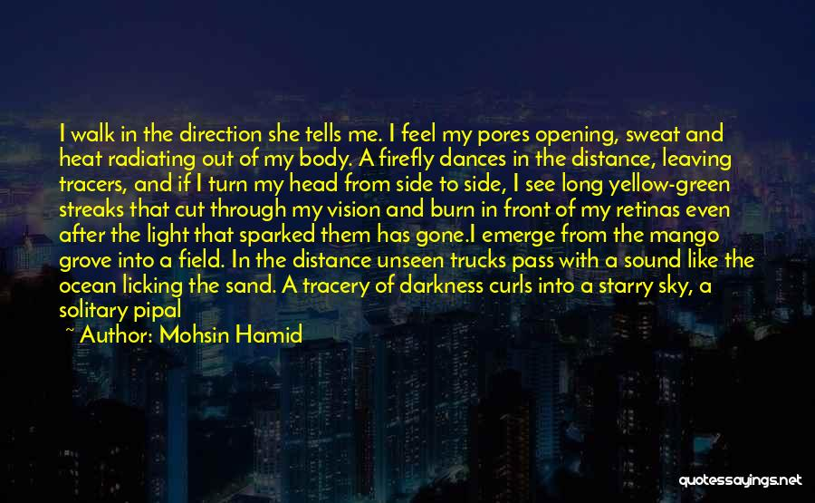 Nature Walk Quotes By Mohsin Hamid