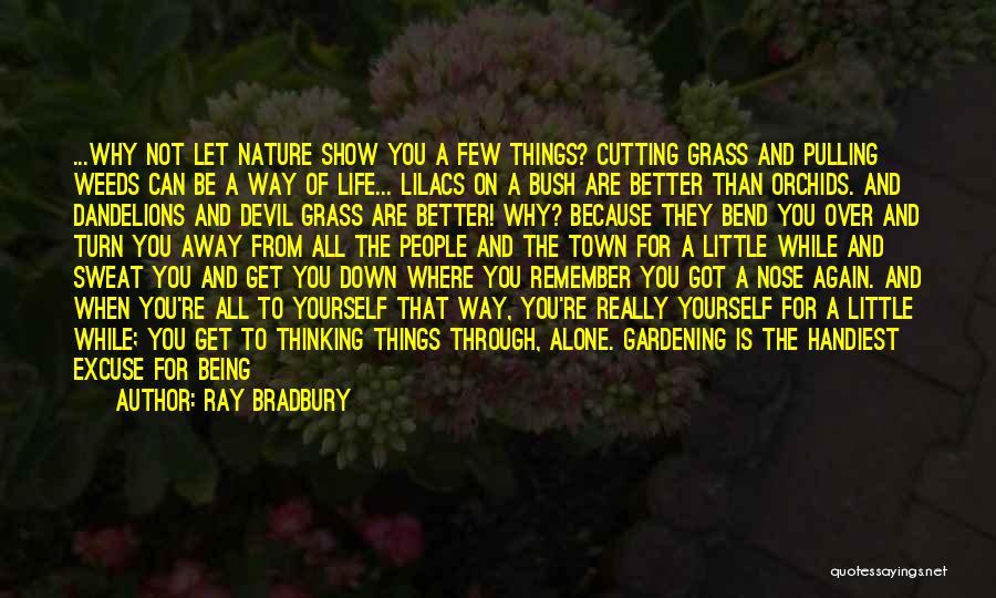 Nature Walk Quotes By Ray Bradbury