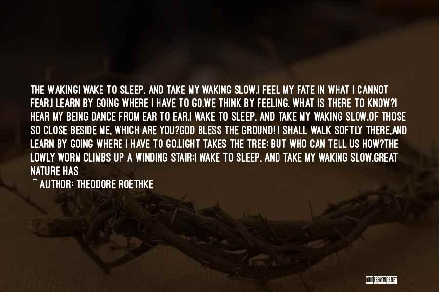 Nature Walk Quotes By Theodore Roethke