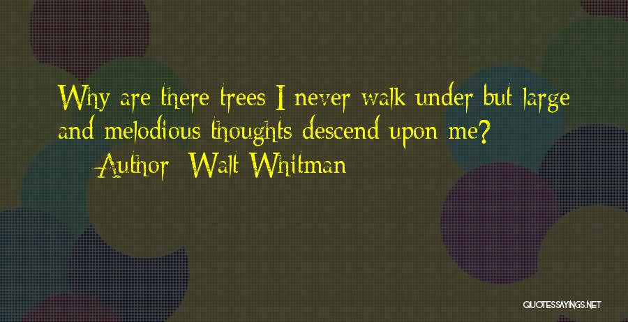 Nature Walk Quotes By Walt Whitman