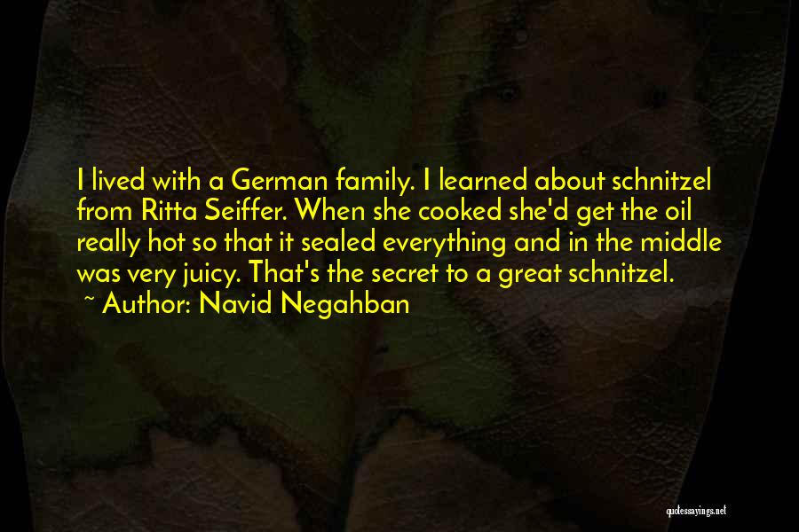 Navid Quotes By Navid Negahban