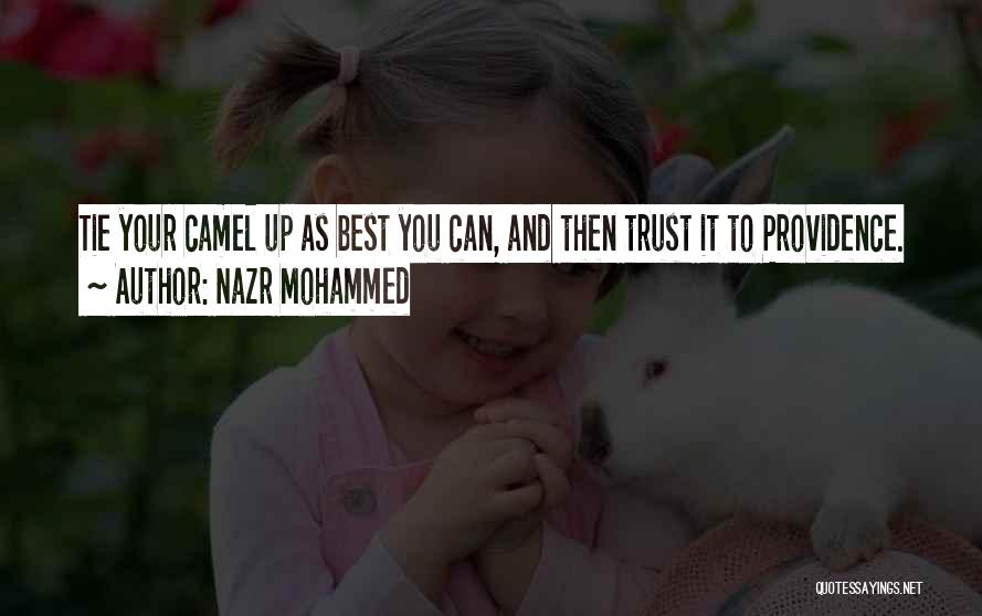 Nazr Mohammed Quotes 1233442