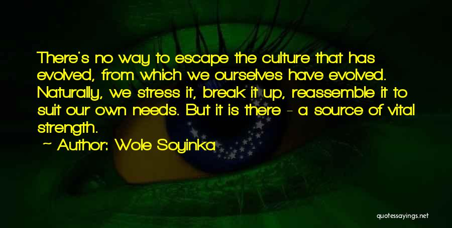 Needs Quotes By Wole Soyinka