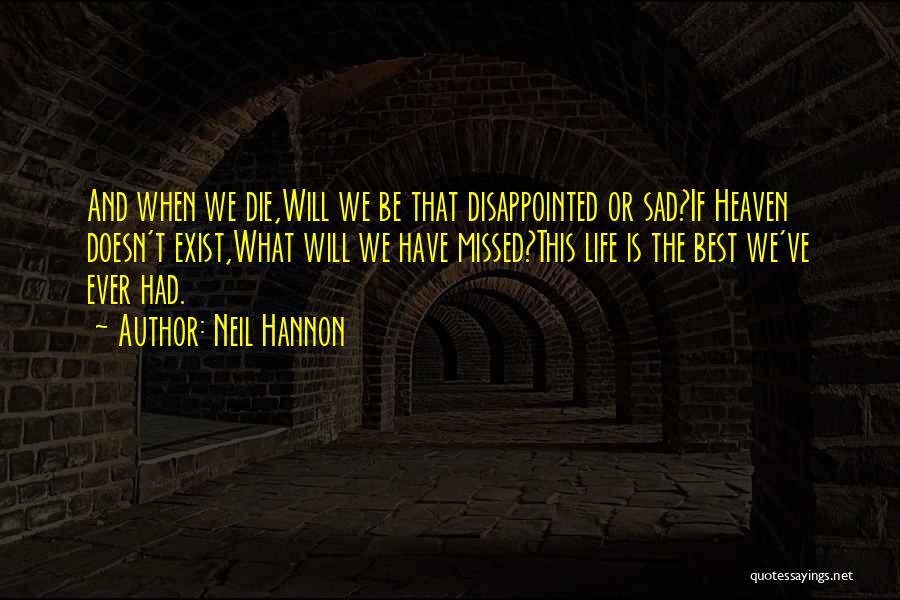 Neil Hannon Quotes 2138659