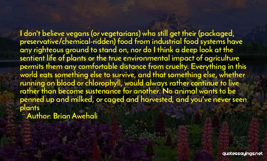 Never Be Comfortable Quotes By Brian Awehali