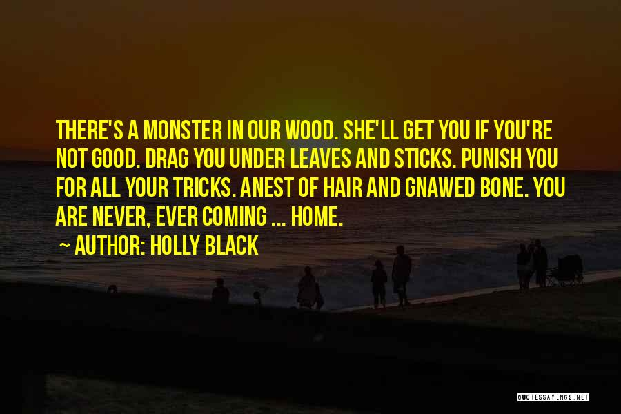 Never Coming Home Quotes By Holly Black