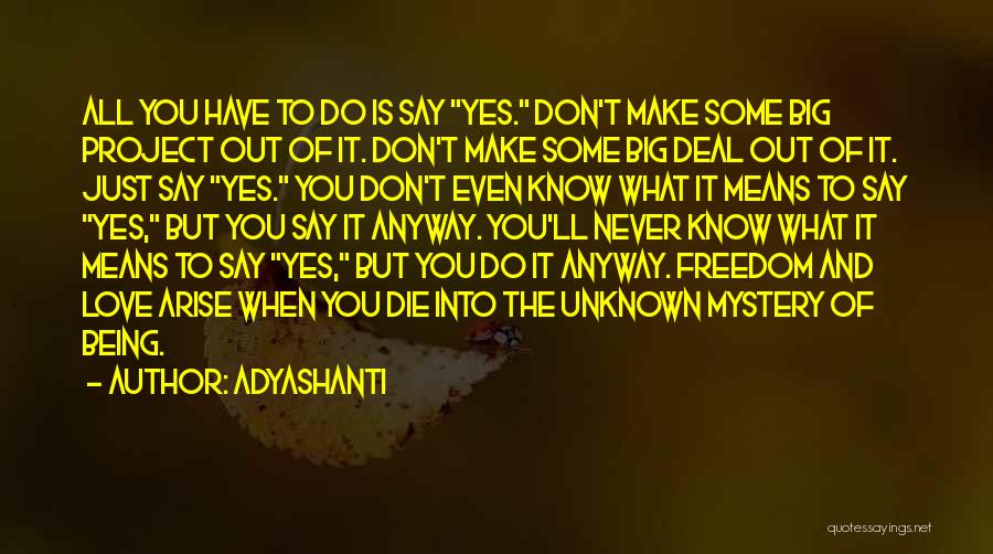 Never Die Love Quotes By Adyashanti
