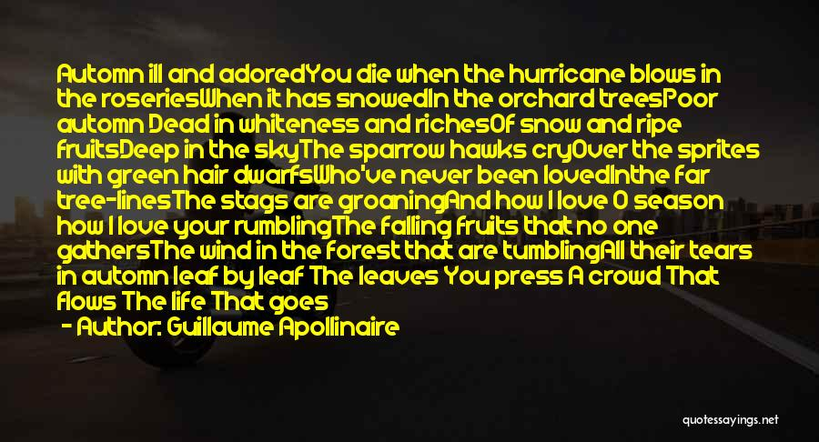 Never Die Love Quotes By Guillaume Apollinaire