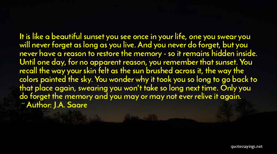 Never Ever Forget You Quotes By J.A. Saare