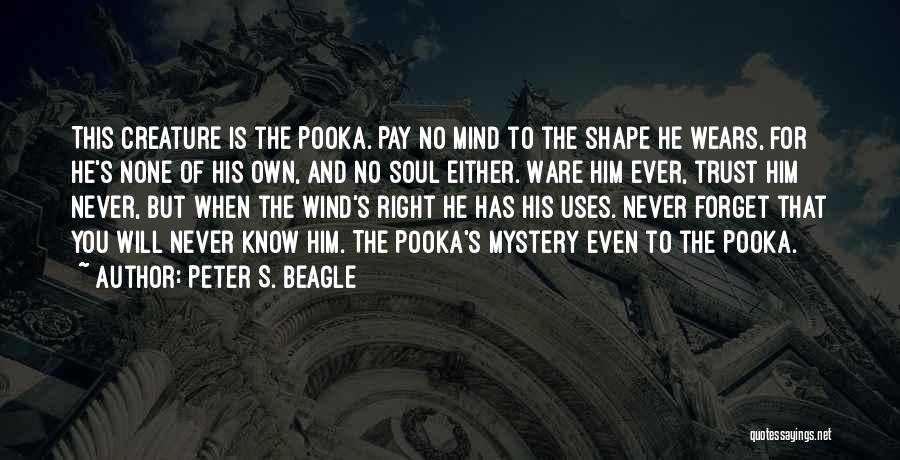 Never Ever Forget You Quotes By Peter S. Beagle