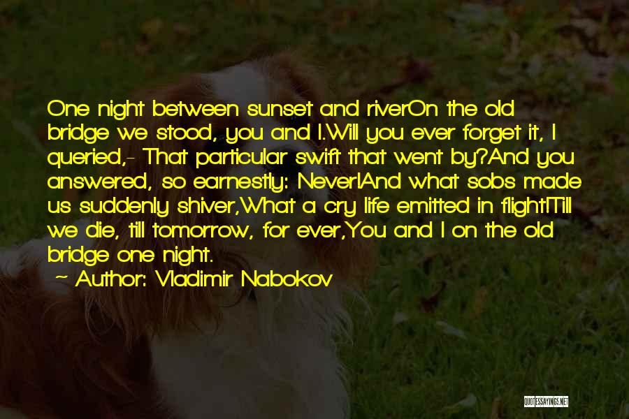 Never Ever Forget You Quotes By Vladimir Nabokov
