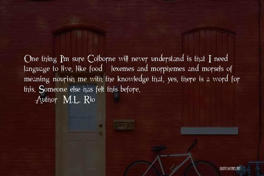 Never Felt Like This Before Quotes By M.L. Rio
