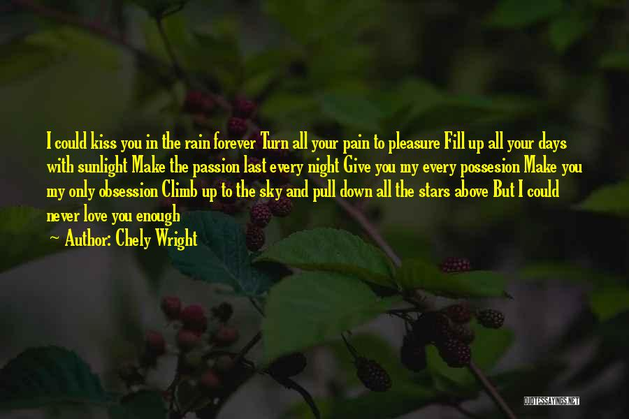 Never Give Up My Love Quotes By Chely Wright