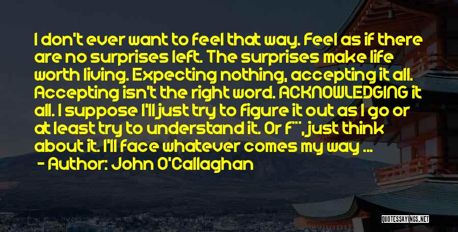 Never Give Up My Love Quotes By John O'Callaghan
