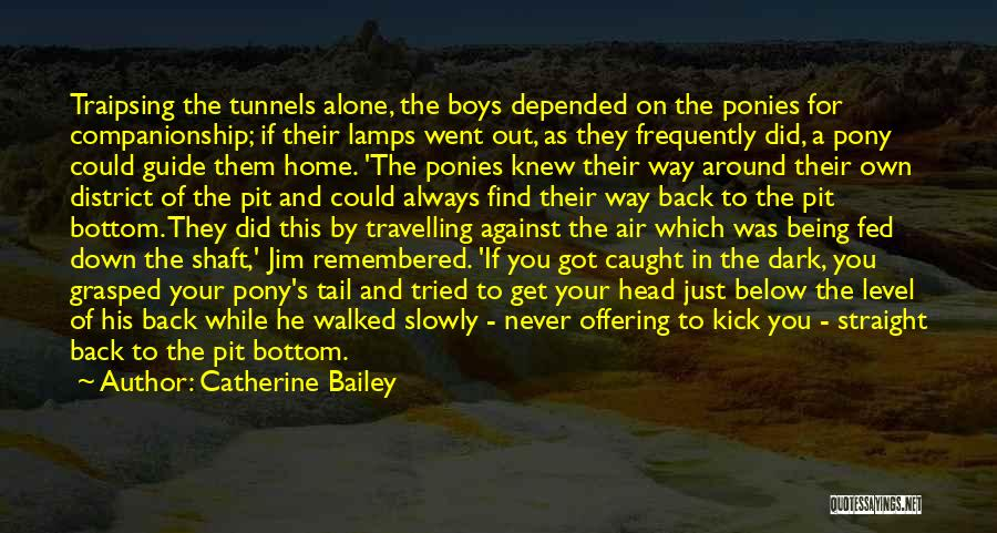 Never Go Down To Their Level Quotes By Catherine Bailey