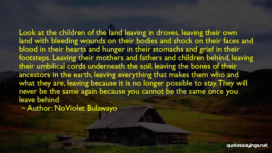 Never Leave Quotes By NoViolet Bulawayo