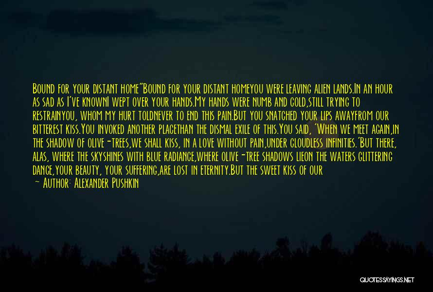 Never Leaving Love Quotes By Alexander Pushkin