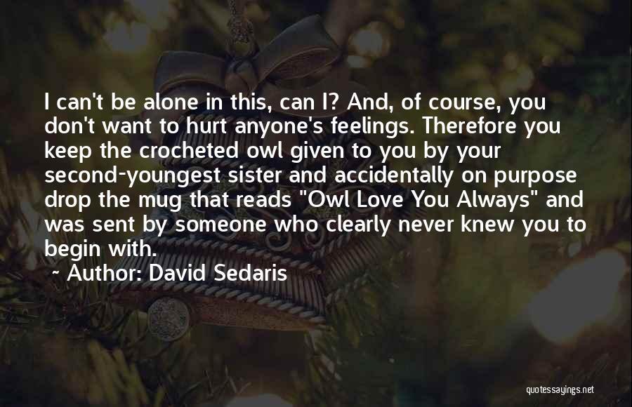 Never Let Anyone Hurt You Quotes By David Sedaris