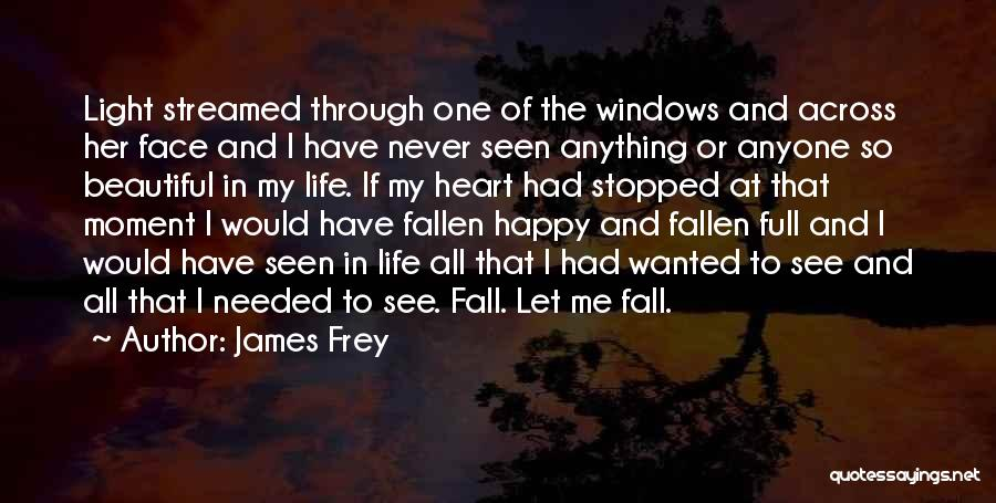 Never Let Me Fall Quotes By James Frey