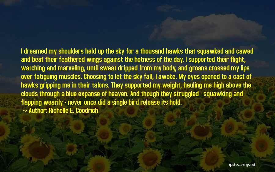 Never Let Me Fall Quotes By Richelle E. Goodrich