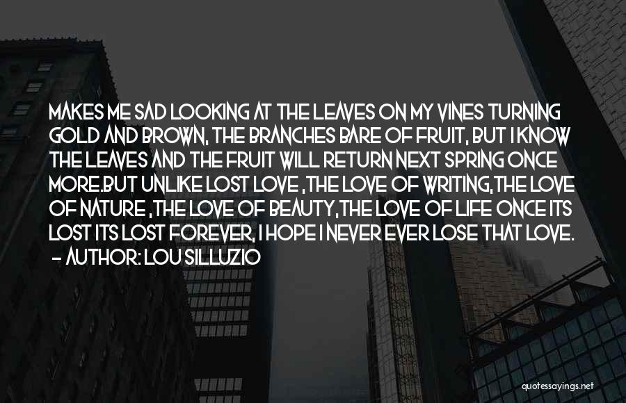 Never Lose Hope For Love Quotes By Lou Silluzio