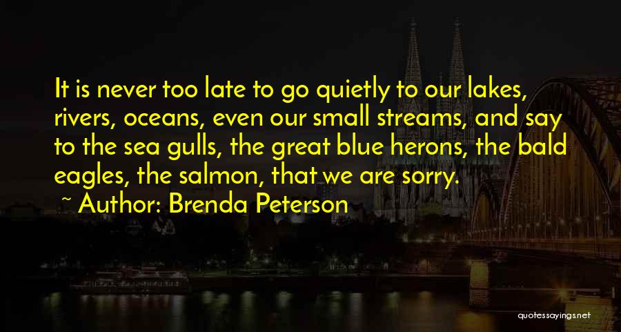 Never Say Sorry Quotes By Brenda Peterson