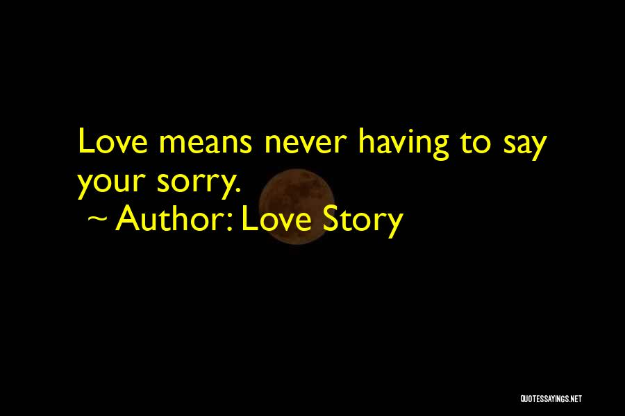 Never Say Sorry Quotes By Love Story