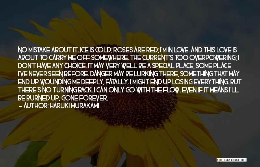 Never Seen Love Quotes By Haruki Murakami