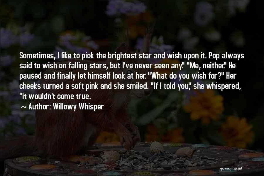 Never Seen Love Quotes By Willowy Whisper